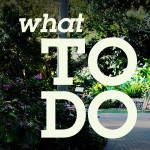 what-to-do